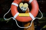 Photo by Citlalli www.claudiaphoto.com