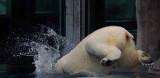Zoo 09 018.jpg