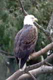 Zoo 09 049.jpg