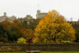 Autumn at Windsor