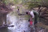 Mussel Survey - Nov. 2003
