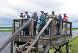 Birders on Unit 30 Platform