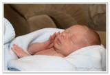 Nov 2 ...  2 weeks old