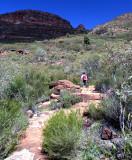 Saint Marys Peak Track2.jpg