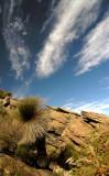 Wilpena Pound Hike3.jpg
