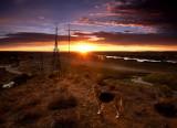 Mannum Sunrise