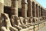 Luxor_10_143.jpg