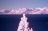 Lake Tahoe California infrared colour composite large