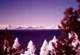 Lake Tahoe California infrared colour composite smaller.jpg