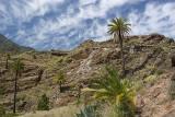 Hiking towards Lomo del Gato