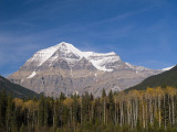 more Autumn at Mount Robson