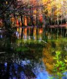 The Fairies' Pond 66