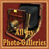 All My Galleries