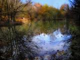 The Fairies' Pond 40