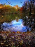 The Fairies' Pond 39