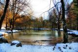 The Fairies' Pond 48