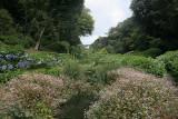 The Lizard, Cornwall 2008