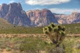Red Rock Canyon, Nevada - May, 2010