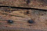 Oiled wood