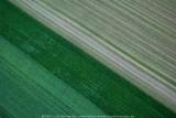 2008-08-06_208.jpg