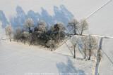 2009-01-10_234.jpg