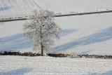 2009-01-10_248.jpg