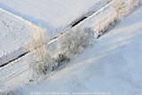 2009-01-10_361.jpg