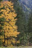kwt_2008-10-01_067.jpg