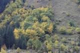 kwt_2008-10-01_133.jpg