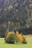 KWT_2008-10-02_014.jpg