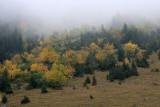KWT_2008-10-02_120.jpg