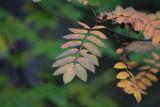 KWT_2008-10-02_128.jpg