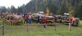 kwt_2008-10-03_073.jpg