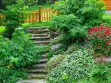 l'escalier de pierre