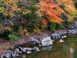 le bord de la rivière Trois Saumons