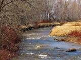ruisseau du printemps