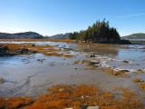 La marée basse et la petite ile