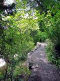 Le chemin menant aux marches naturelles