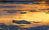 fleuve doré de janvier