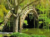 Jardin japonais- Huntington garden