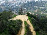Promenade à Griffith Park