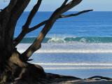 les vagues du matin - Carmel