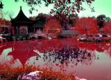 le lac de sang , l'approche vampire