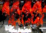 canards laqués - Chinatown San Francisco