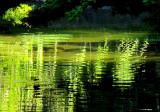 les reflets verts du petit lac
