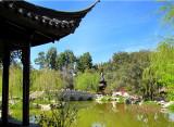 le bassin du jardin chinois