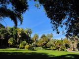 Une partie des Huntington garden