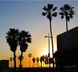 Soirée à Venice beach