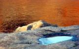 le Saguenay couleur d'automne et la flaque couleur de ciel