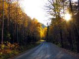 soleil de fin de journée sur la route du parc